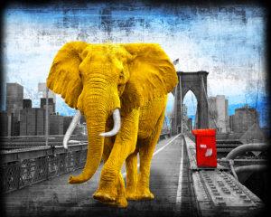 Tripping On Brooklyn Bridge