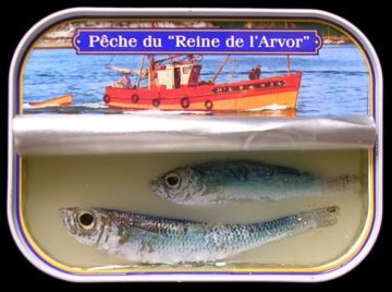 Sardines – 2