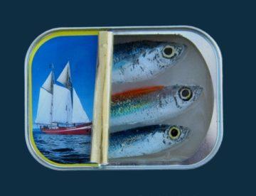 Sardines – 1