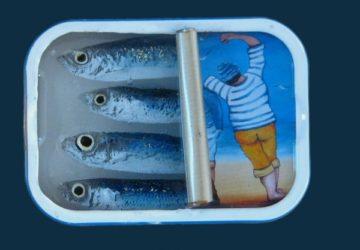 Sardines – 7