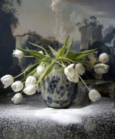 Flowers Of White Sugar