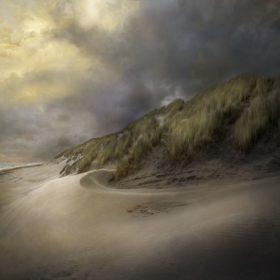Landscape 40
