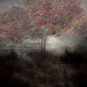 Landscape 109