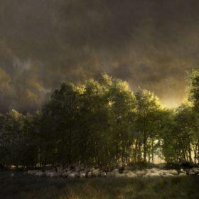 Landscape 110