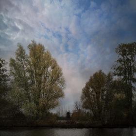 Landscape 23