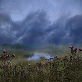 Landscape 35