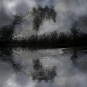 Landscape 38