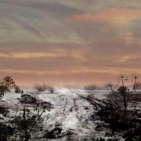 Landscape 45