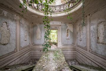 Weeping Garden