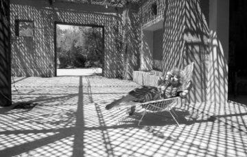 Shadows in Palmaraie